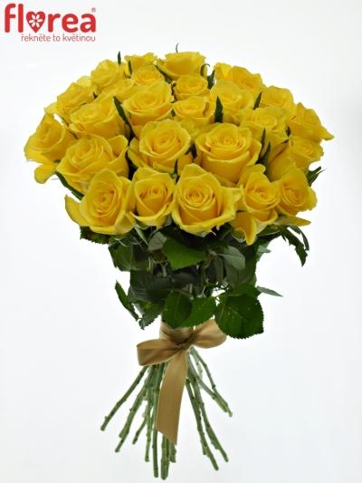 Kytice 25 žlutých růží MOONWALK 50 cm