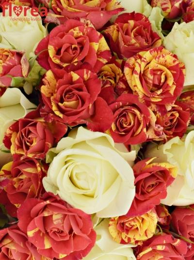 Kytice 32 míchaných růží PEGAFLASH 40cm