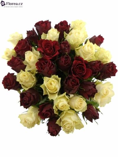 Kytice 35 míchaných růží AGAVE 60cm