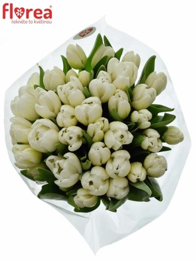 Kytice 35 bílých tulipánů WHITE DREAM 40cm