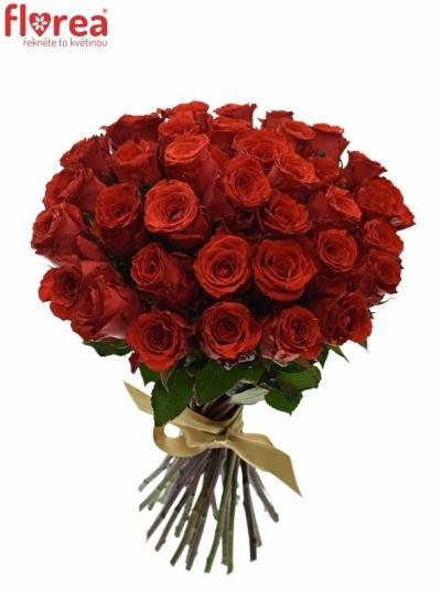 Kytice 35 červených růží BRIGHT TORCH