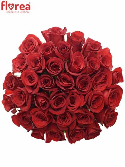 Kytice 35 červených růží FREEDOM 40cm