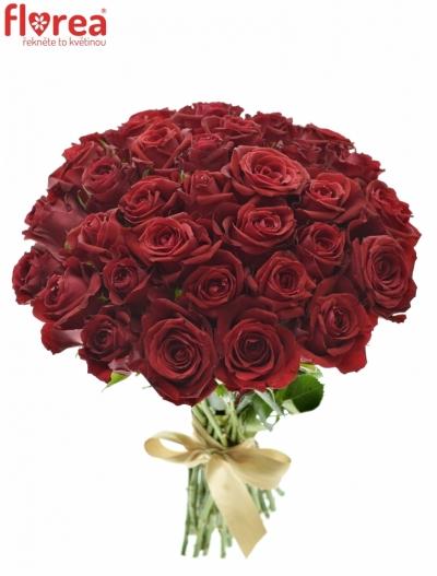 Kytice 35 červených růží FURIOSA 40cm