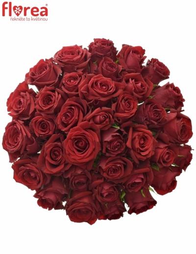Kytice 35 červených růží FURIOSA 50cm