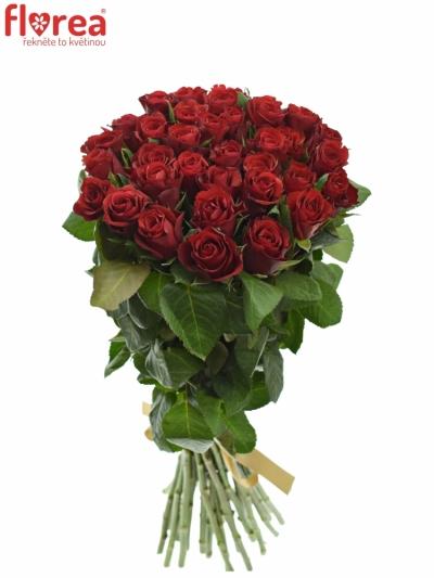 Kytice 35 červených růží RED RIBBON 50cm
