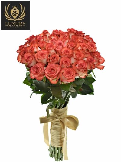 Kytice 35 luxusních růží BLUSH 70cm