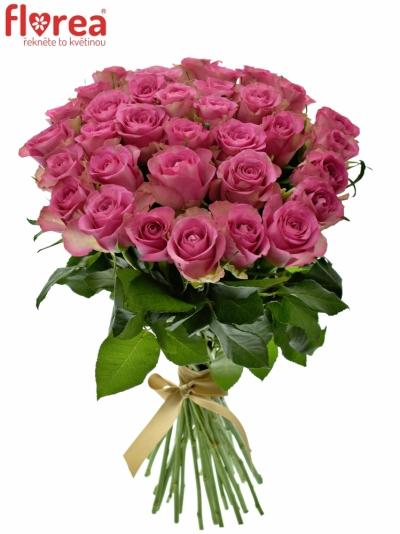 Kytice 35 malinových růží ROYAL JEWEL 50cm