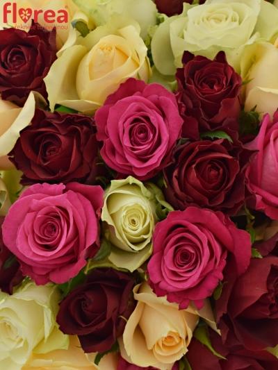 Kytice 35 míchaných růží AMALGITH
