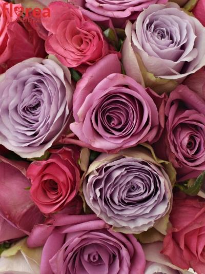 Kytice 35 míchaných růží DARIELLA
