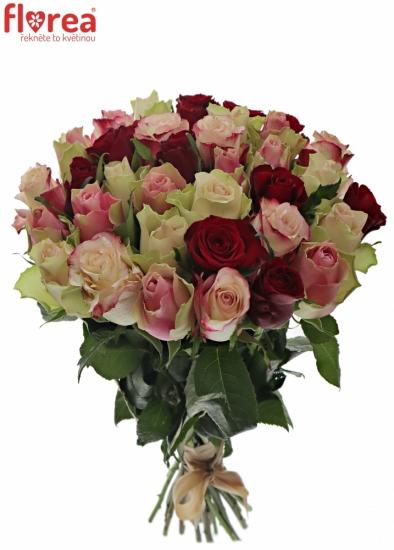 Kytice 35 míchaných růží EBIGALE 50cm