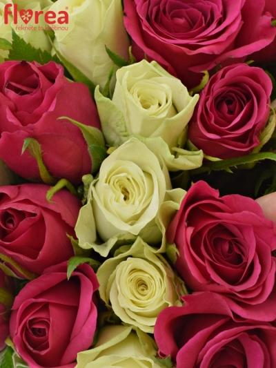 Kytice 35 míchaných růží FUCHSITENA 40cm