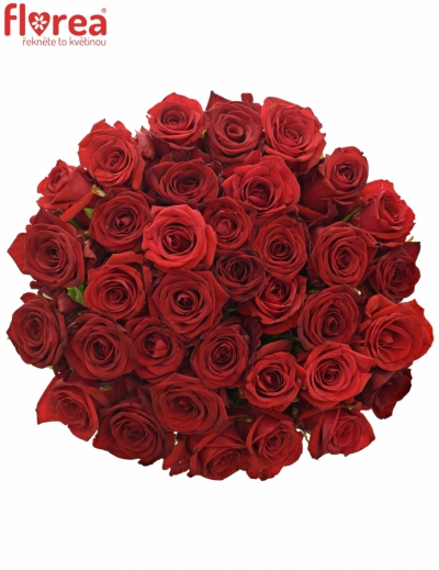Kytice 35 míchaných růží JOANNA 55cm