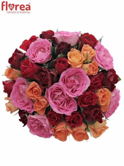 Kytice 35 míchaných růží KATRIEL 40cm