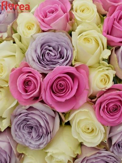 Kytice 35 míchaných růží LIGHT LORRIESS