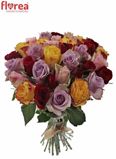 Kytice 35 míchaných růží MIRIAM 35cm