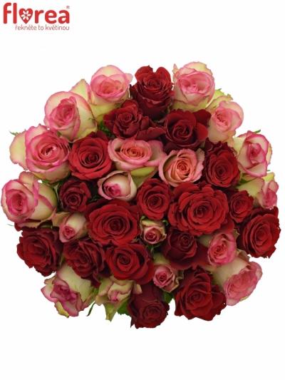 Kytice 35 míchaných růží ODETTE 60cm