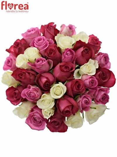 Kytice 35 míchaných růží PURPLE DANCE 60cm
