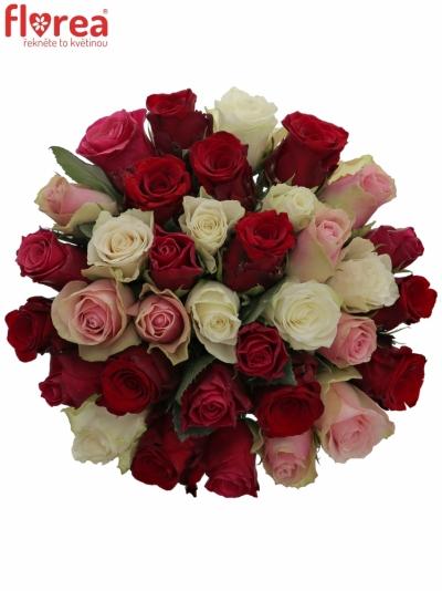 Kytice 35 míchaných růží RADWAN 50cm