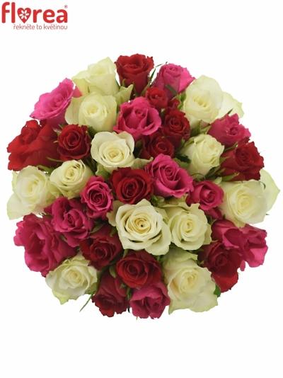 Kytice 35 míchaných růží WHITE GRACIANA 35cm