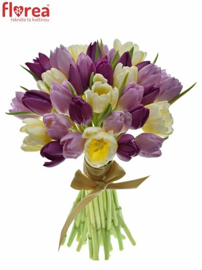 Kytice 35 míchaných tulipánů PINK VALENTIN 35cm