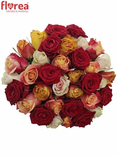 Kytice 35 míchaých růží PITTHEUS 50cm