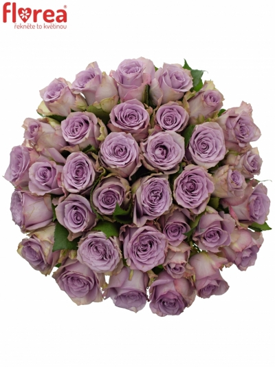 Kytice 35 modrofialových růží DANCING CLOUDS! 60cm