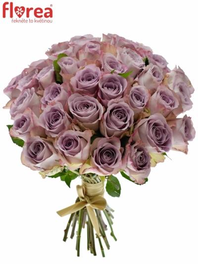 Kytice 35 modrofialových růží MEMORY LANE 40cm