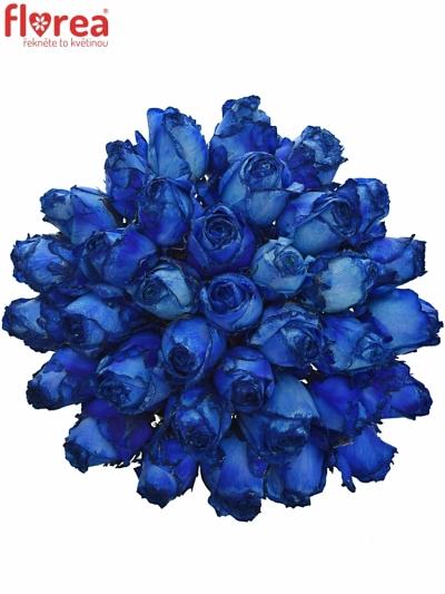 Kytice 35 modrých růží BLUE QUEEN OF AFRICA 50cm