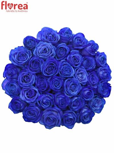 Kytice 35 modrých růží BLUE VENDELA 70cm