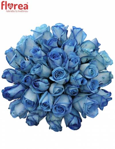Kytice 35 modrých růží LIGHT BLUE SNOWSTORM