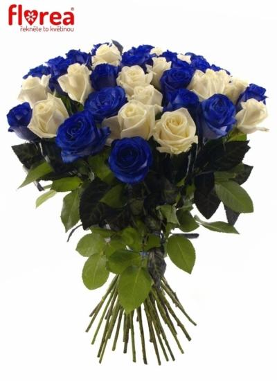 Kytice 35 modrých růží MARIANNA