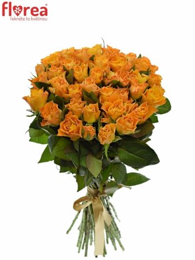 Kytice 35 oranžových růží MARIE-CLAIRE! 60cm