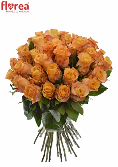 Kytice 35 oranžových růží MONALISA 50cm
