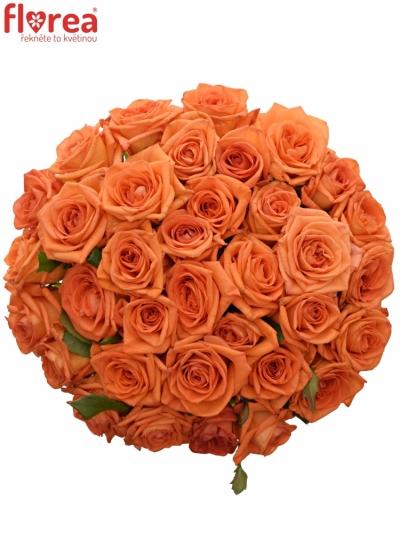 Kytice 35 oranžových růží NARANGA