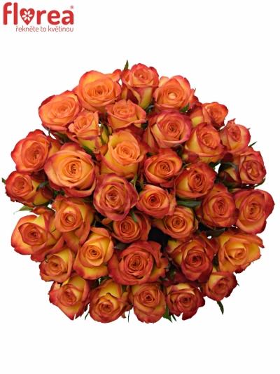 Kytice 35 oranžových růží OUTLAW! 50cm