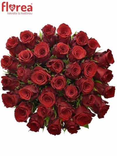 Kytice 35 rudých růží INCREDIBLE 60cm