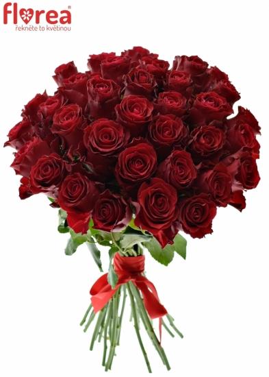 Kytice 35 rudých růží RHODOS