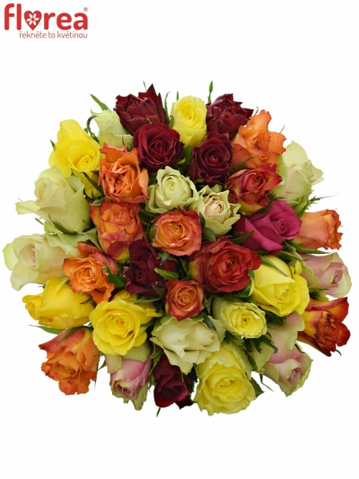 Kytice 35 růží MIX 40cm