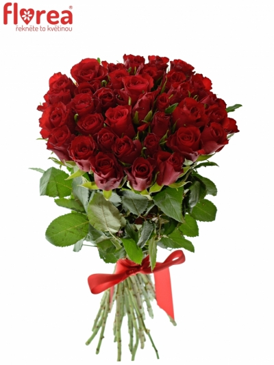 Kytice 35 růží RED CALYPSO