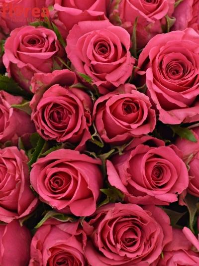 Kytice 35 růží TENGA VENGA