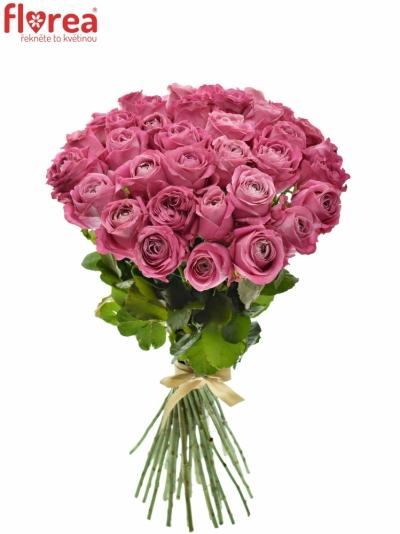 Kytice 35 růžových růží ALL 4 LOVE+