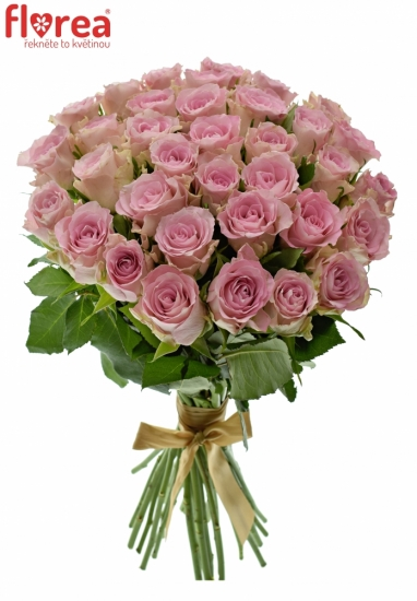 Kytice 35 růžových růží BISOU 40cm