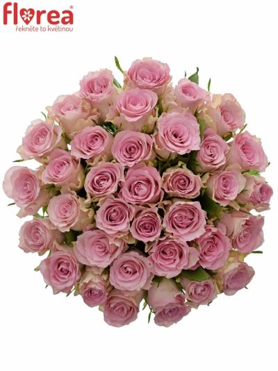 Kytice 35 růžových růží BISOU 50cm