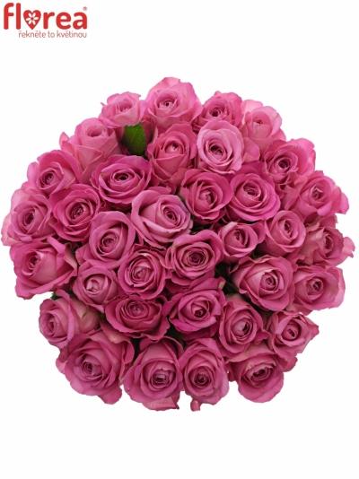 Kytice 35 růžových růží H3O 40cm
