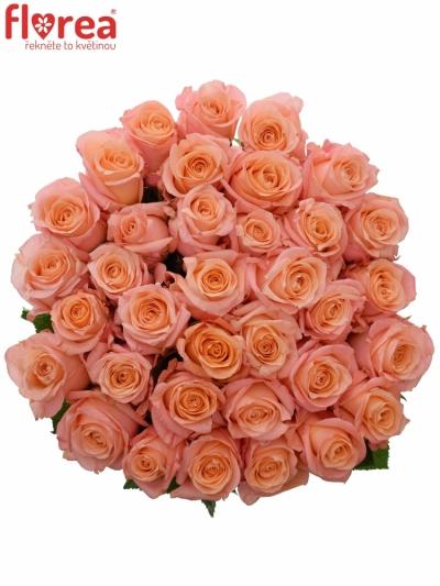 Kytice 35 růžových růží LADY MARGARET 50cm