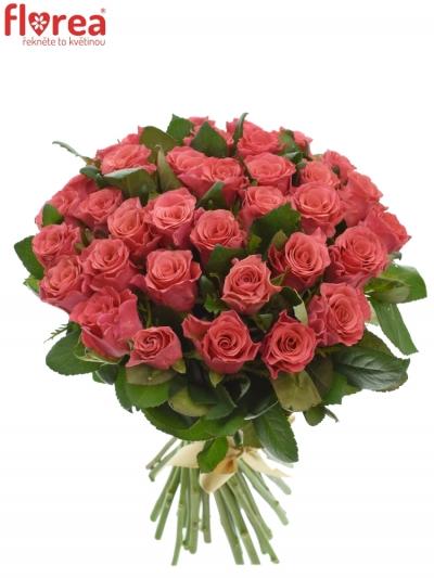 Kytice 35 růžových růží PINK TACAZZI