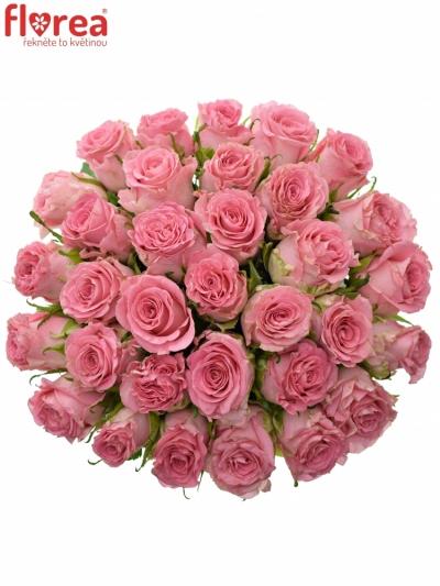 Kytice 35 růžových růží SEDUCTIVE@ 50 cm