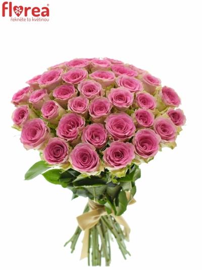 Kytice 35 růžových růží TIMES SQUARE
