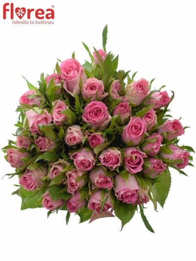 Kytice 35 růžových růží TISENTO 40cm