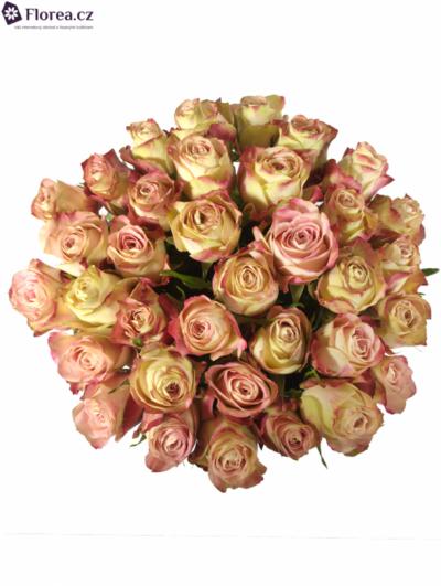 Kytice 35 růžových růží UPPER SECRET 60cm